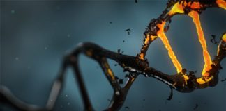 CRISPR used in the treatment of cancer in the United