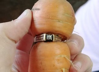 Woman finds diamond ring on carrot in garden