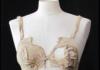 ancestor of the bra!