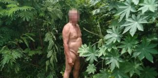 Old man caught nude while having sex with a cow
